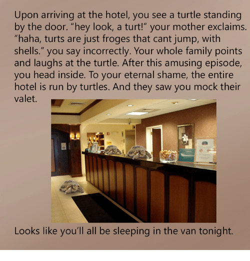 upon-arriving-at-the-hotel-you-see-a-turtle-standing-16954003.png